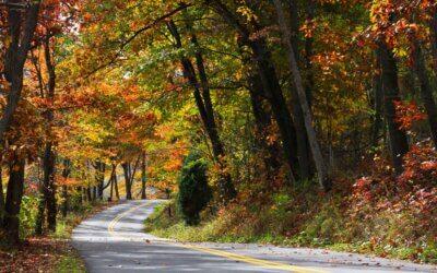 53rd Annual Autumn Glory Festival: October 7 – 11, 2020