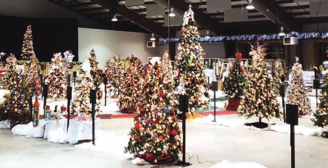 12th Annual Festival of Trees
